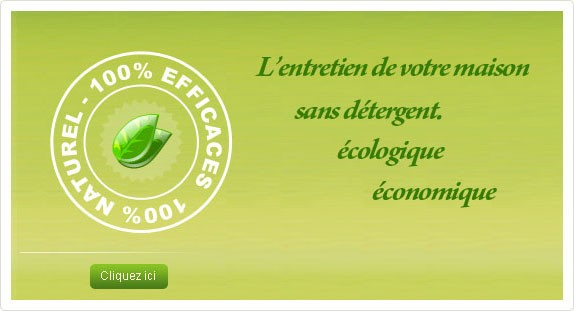 Entretien Ecologique